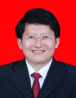 安振华教授